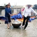 Tin tức - Làng có 142 góa phụ: Tang thương đất biển