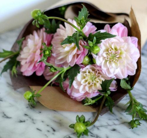 Tặng chị em mẹo cắm hoa tươi lâu - 1
