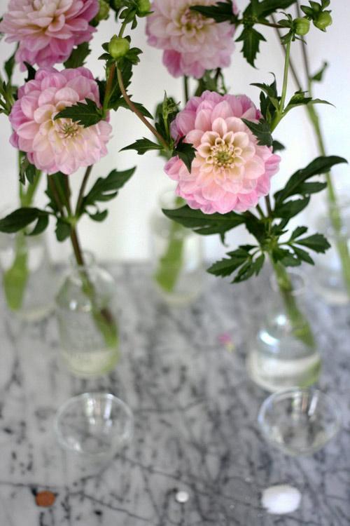 Tặng chị em mẹo cắm hoa tươi lâu - 2