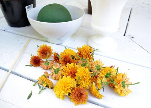 cam hoa cuc de ban dep trong 5 phut - 2