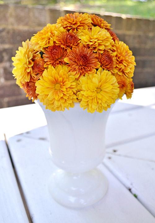 cam hoa cuc de ban dep trong 5 phut - 6