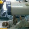 Tin tức - TQ: Bé 3 tháng tuổi bị ném vào chảo nước sôi