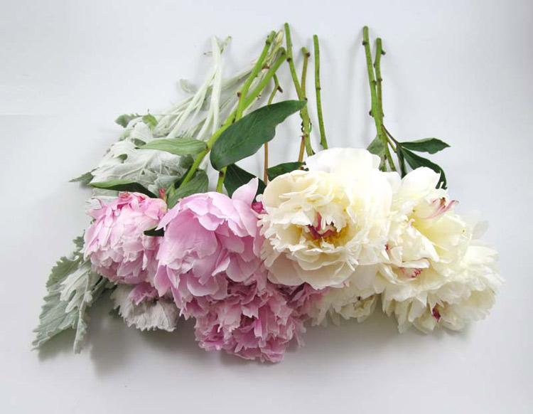 Hướng dẫn cách bó hoa cầm tay cô dâu bằng hoa mẫu đơn