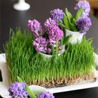 hoa trang tinh khoi cho ngay cuoi tron ven - 10