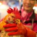 Tin tức - Hồng Kông xác nhận ca nhiễm cúm H7N9 đầu tiên