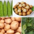 Bà bầu - Những loại rau quả dễ làm mẹ 'mất' con