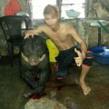 Tin tức - Thanh niên khoe ảnh giết gấu có thể bị tù cao nhất 7 năm