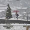 Tin tức - Ảnh, video: Tuyết trắng trời ở Sa Pa