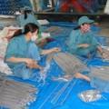 Tin tức - 77 công việc cấm sử dụng lao động nữ