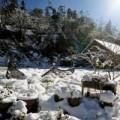 Tin tức - Ảnh: Sa Pa phủ tuyết trắng đẹp nhất 50 năm qua