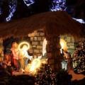 Tin tức - Ngắm các nhà thờ ở Hà Nội trước đêm Noel