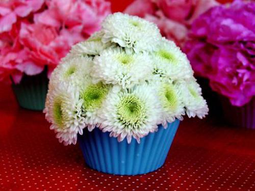 la mat kieu cam hoa hinh banh cupcake - 6