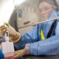 Tin tức - Thái Lan tìm ra kháng thể mới chữa khỏi bệnh Ebola