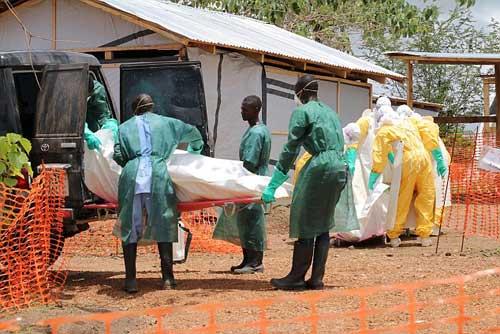 chau au truoc nguy co bi ebola tan cong - 2