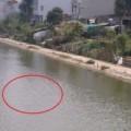 Tin tức - Bị ném gạch, nam thanh niên chết đuối dưới hồ câu
