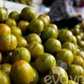 Bếp Eva - Hồng ngâm - Quà ngon của mùa thu Hà Nội