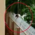 Tin tức - TQ: Trèo rào KTX gặp bạn trai, nữ sinh bị điện giật chết