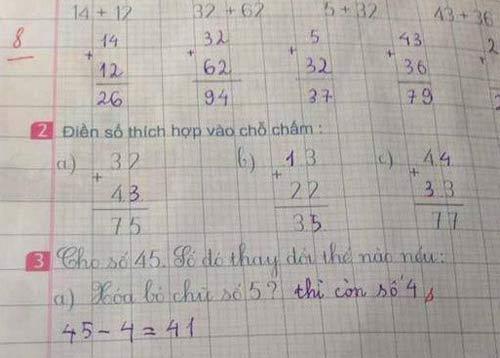 Đáp án đề toán tiểu học khiến dân mạng tranh cãi gay gắt-1