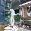 Mua sắm - Giá cả - Thị trường gạo thế giới đang cạnh tranh gay gắt