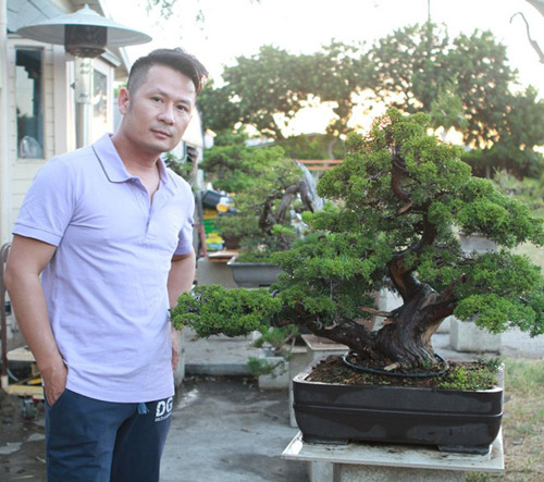vuon bonsai tien ty o my cua bang kieu - 3