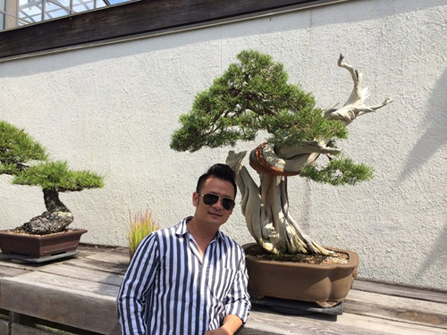 vuon bonsai tien ty o my cua bang kieu - 7