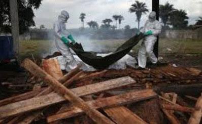 da nang: cach ly mot truong hop nghi nhiem ebola - 1
