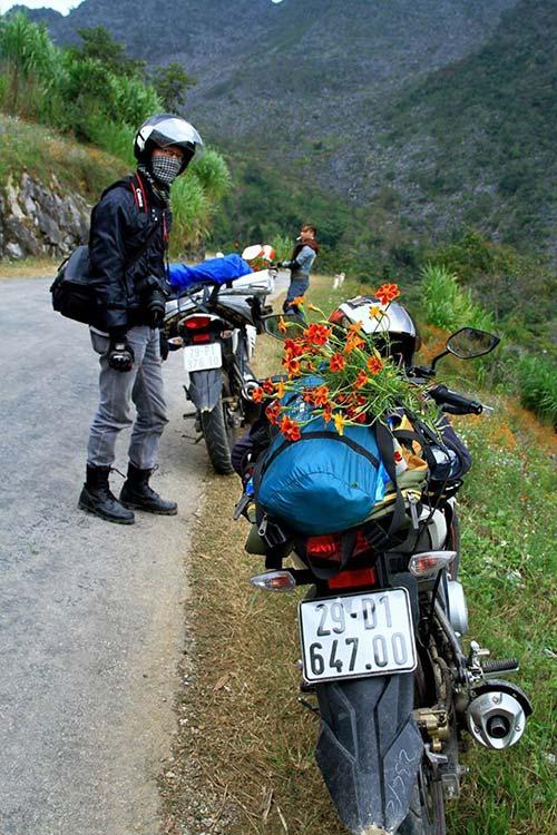 ha giang dep quyen ru mua hoa no tren da - 15