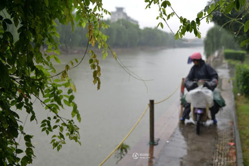 cam dong tinh yeu doi vo chong dua bao - 7