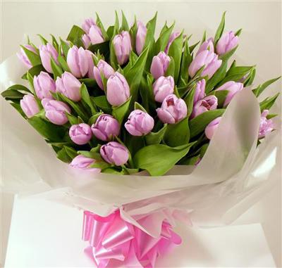 5 buoc trong tulip no dung dot tet ve - 17