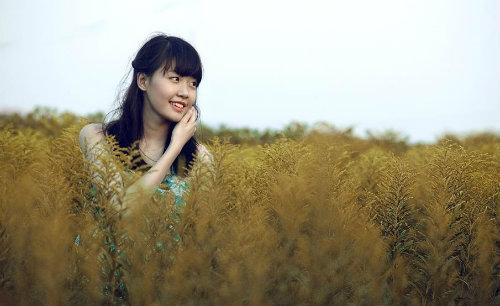 """nhan sac nu sinh hai phong dang """"don tim"""" dan cu mang - 8"""