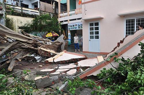 Phú Yên – Bình Định: Nhà sập, cây xác xơ sau bão số 4 - 6