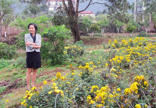 thu phuong, my linh thich thu trong rau sach tai nha - 5