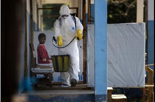 khong tin bac sy, bo om con nhiem ebola tron vao rung - 2