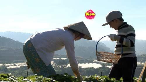 """bo oi...: minh khang muon danh """"chong thuy hanh"""" de xin tien - 4"""
