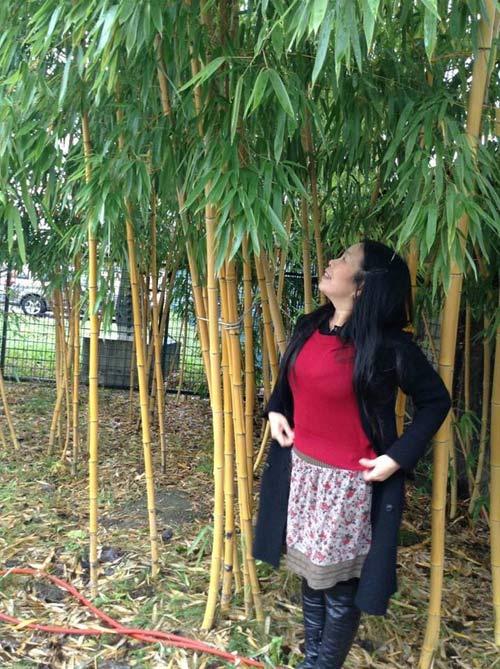 Mảnh vườn Việt đáng ngưỡng mộ trên đất Hungary - 8
