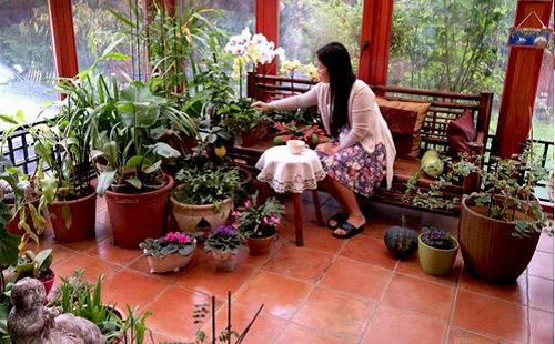 Mảnh vườn Việt đáng ngưỡng mộ trên đất Hungary - 7