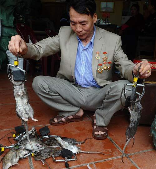 """""""vua chuot"""" viet nam len bao phap - 2"""