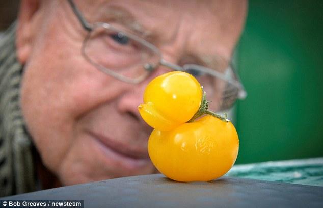 khi nhung nguoi dan ong trong ca chua ngot ngao - 3