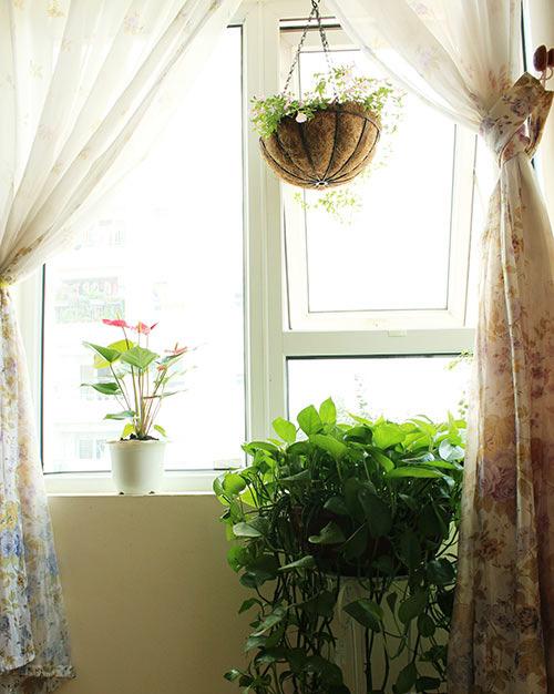 2014 - chi em me dam nhung vuon hoa ruc sac - 11