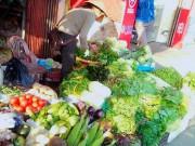 Tin tức - Nhiều mẫu rau xanh ở chợ tồn dư thuốc bảo vệ thực vật