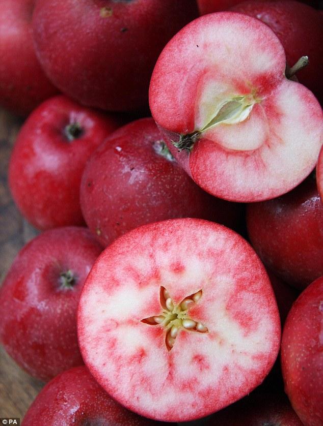 Ngắm táo ruột đỏ giòn ngọt có giá 860.000 một cây-2