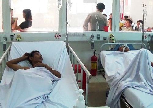 Nghệ An: Ăn phải cá nóc độc, 8 người nhập viện cấp cứu-1