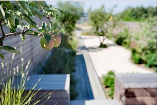 7 mẹo bày vườn nhà đơn giản mà đẹp như Tây-3