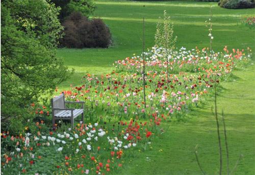 7 mẹo bày vườn nhà đơn giản mà đẹp như Tây-1