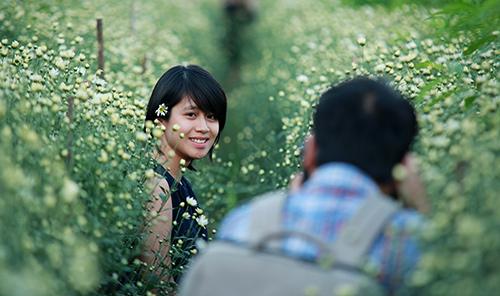 ha noi dep tinh khoi mua hoa cuc hoa mi - 18