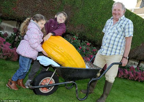 Choáng váng cụ ông 67 tuổi trồng rau củ quả to hơn cả cháu - 4