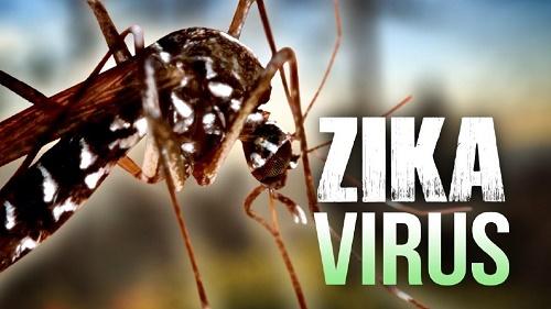 phat hien them 2 phu nu nhiem vi rut zika tai tp. hcm va binh duong - 1
