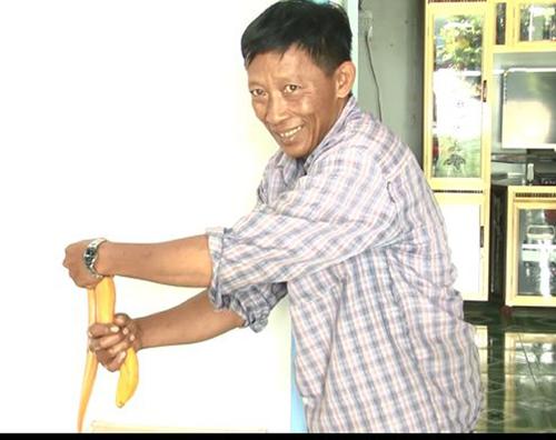 lao nong mien tay bat duoc luon vang, 50 trieu chua ban - 2
