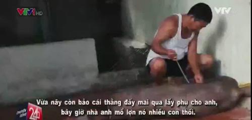 "lon chet boc mui gia 200.000 dong/con duoc ""phu phep"" thanh dac san thit lon man - 2"