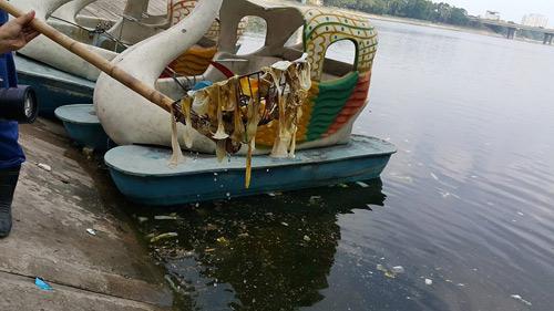Bao cao su, băng vệ sinh nổi trắng hồ Linh Đàm: Dân bức xúc, công an vào cuộc điều tra-2